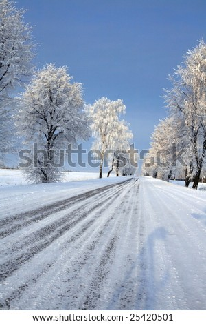 Road in snow - winter scene