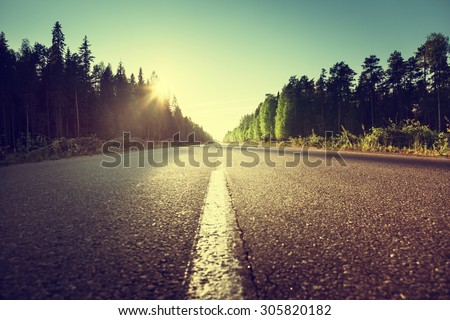 road in summer forest - stock photo