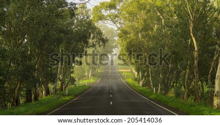 Road in the Adelaide Hills, South Australia - stock photo