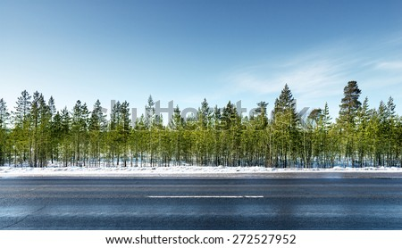 road in winter forest - stock photo