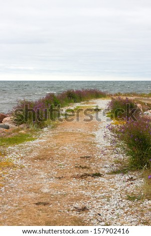 Road leading to the sea. Nordic nature of Gotland, Sweden. - stock photo