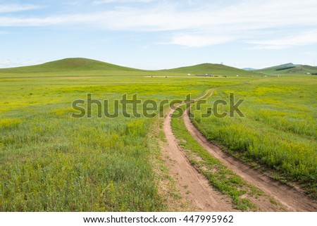 Road on the prairie