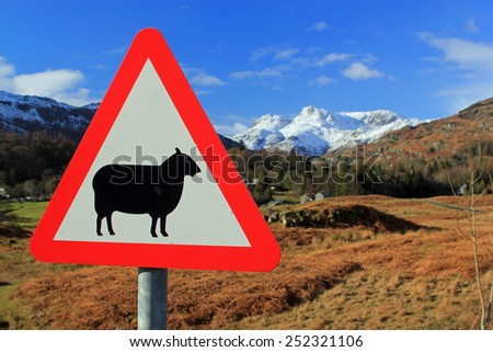 Road sign for sheep with a backdrop of red and green countryside with snow capped mountains and idyllic blue sky symbolizing farming and the sheer beauty of the countryside - stock photo