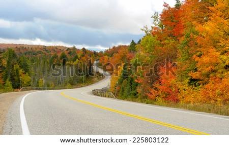 Road through Algonquin Park - stock photo