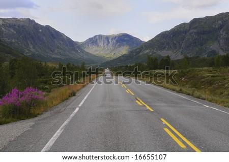 Road through mountain landscape, Norway