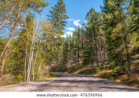 Road through the Black Hills of South Dakota in the spring.