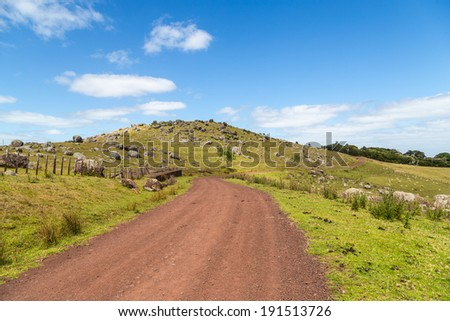Road through the green hills with volcanic rocks on Waiheke island, Ne w Zealand - stock photo