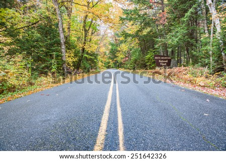 road through White Mountain Forest, New England - stock photo