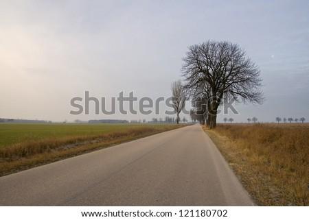 Road to village - stock photo