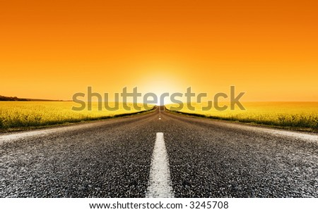 Road travelling through a Canola Field at Sunset - stock photo