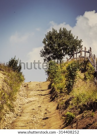 Road up the mountain, lonely tree and blue sky with clouds - stock photo
