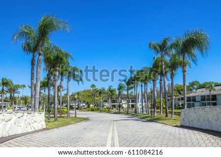 Road with double yellow lines, palm trees, wall and blue sky