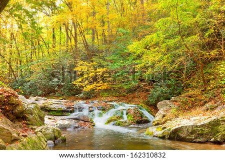 Roaring Pigeon River cascades through a lush forest and mossy boulders, Great Smoky Mountains National Park, Tennessee - stock photo