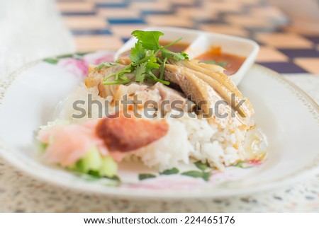 Roast Duck over Rice in plate with sauce