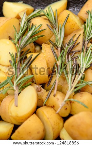 Roast potatoes with a Rosemary garnish
