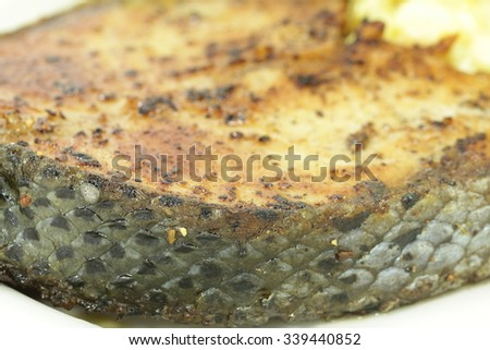 roasted atlantic salmon steak - stock photo