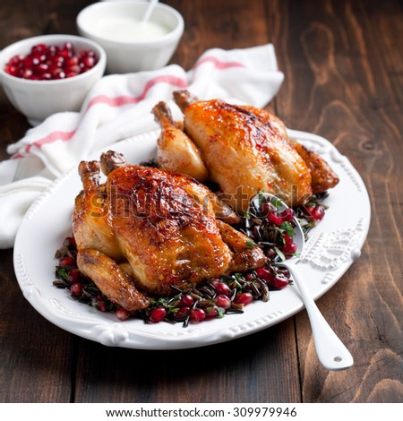 Roasted chicken with wild rice, cilantro and pomegranate garnish, selective focus - stock photo