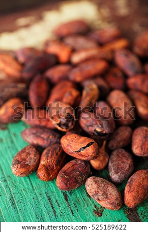 roasted cocoa chocolate beans on wood background macro