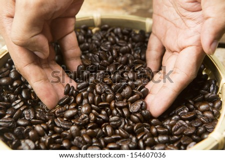 Roasted Coffee beans in hands - stock photo