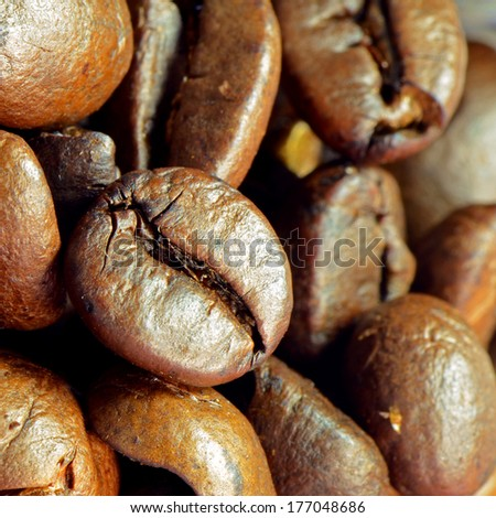 Roasted coffee beans prepared to make a very good coffee drink shot. A best coffee come from Brazil.