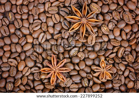 Roasted coffee beans with star-anise - stock photo