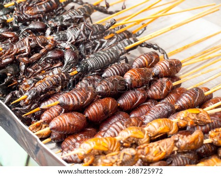 Roasted fried insects and scorpions and bugs as snack street food in China - stock photo