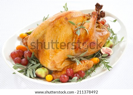 Roasted turkey on tray garnished with red grapes, figs, kumquat, and herbs over white background  - stock photo