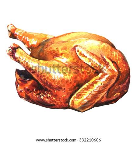 roasted turkey on white background - stock photo