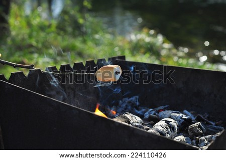 Roasting marshmallows on wooden stick over a campfire - stock photo