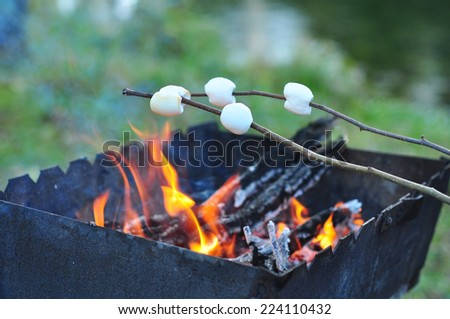 Roasting marshmallows on wooden stick over a campfire in the evening - stock photo