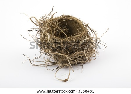 Robin's nest photographed in the studio on a white background