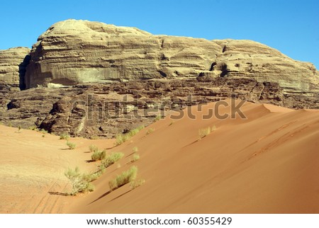 Rock and barchan in Wadi Rum desert in Jordan
