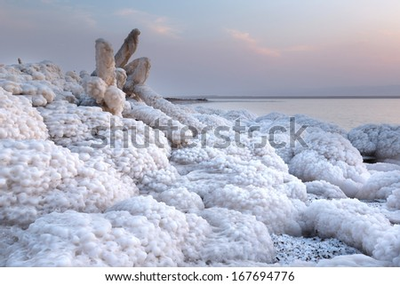 Rock and wooden branch covered with salt in Dead Sea, Jordan - stock photo
