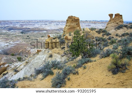 Rock formation in De-Na-Zin Wilderness, New Mexico