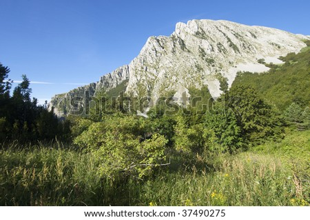 Rock mountain and meadow in Pyrenees