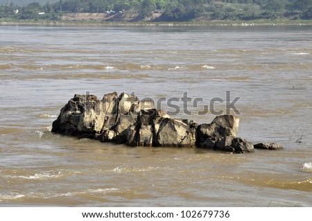 Rock Stone River Image Fish - stock photo
