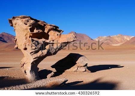 Rock Tree in Bolivian Desert. A Road Trip to Salar de Uyuni in Potosi, Bolivia - stock photo