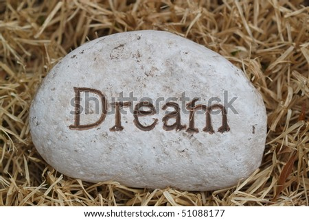 rock with saying dream on the grass - stock photo