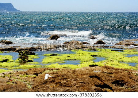 Rocks with the sea in the background, with blue skies  - stock photo