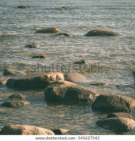 rocky beach in the baltic sea with plants and skyline - instant vintage square photo