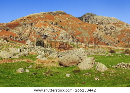 Rocky field in the Upper Langdale Valley. A majestic mountain clad in golden autumn heather is seen behind a field covered in scattered boulders. - stock photo