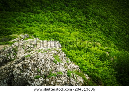 Rocky mountain slope overlooking the forest. Selective focus - stock photo