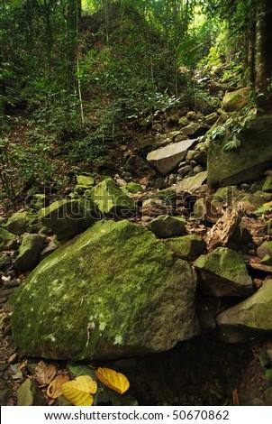 Rocky Mountain Trail - stock photo