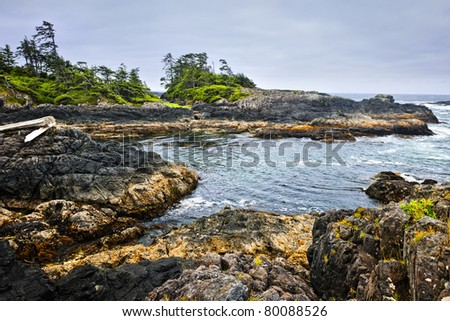 Rocky ocean shore in Pacific Rim National park, Canada - stock photo