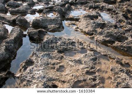 Rocky scenic from a rocky seashore. Sea water corroded the rock which form small holes which are filled with sea water