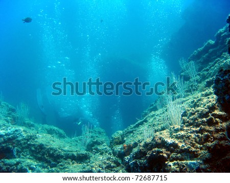 Rocky seabed with air bubbles of scuba diver, natural scene, Mediterranean sea