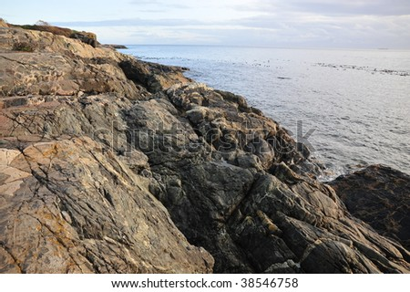 rocky seashore in james bay, victoria, british columbia, canada
