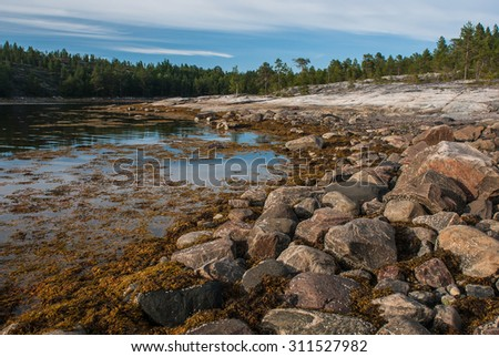 rocky shore of the White Sea at low tide against the sky - stock photo