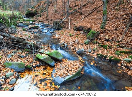 Rocky Stream, Running Through Autumn Mountain Forest - stock photo