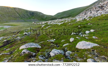 Rocky terrain and vegetation on the Mageroya island, Norway
